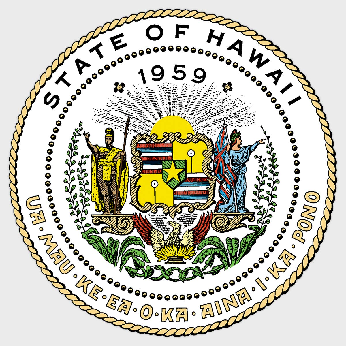 Professional & Vocational Licensing | Hawaii Medical Board