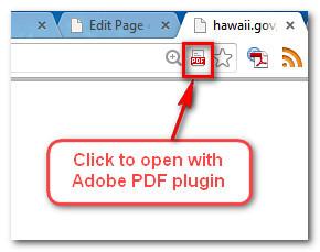 pdf_plugin
